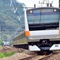 Photos: 中央線の通勤電車