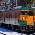 写真: 雪の上越路を行く115系湘南色
