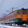 Photos: 雪塵巻き上げて! 上越線 738M  115系湘南色@後閑-沼田