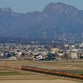 写真: 妙義山を背に115系湘南色が走る!