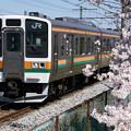 Photos: 桜と211系