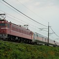 Photos: EF81-81牽引カシオペア紀行@蒲須坂築堤