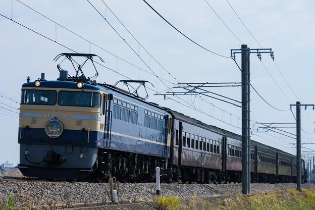 9135レ ELレトロ碓氷 EF65-501+旧客5B+C6120