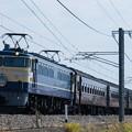 写真: 9135レ ELレトロ碓氷 EF65-501+旧客5B+C6120