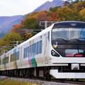 Photos: E257系快速@桑ノ原ストレート