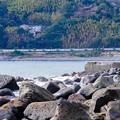 Photos: 185系特急踊り子@伊豆稲取~今井浜海岸4