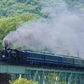 Photos: SLぐんまみなかみ@新緑眩しい棚下鉄橋