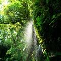 写真: 裏見ヶ滝