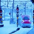 Photos: 雪のE6系