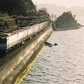 写真: 海岸寺の「お立ち台」を行く貨物列車