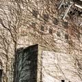 写真: 旧琴平電鉄畑田変電所の廃墟