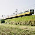 築堤を行く還暦記念列車