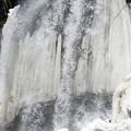 写真: 早春の滝