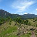 Photos: 山上の散歩道