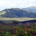 Photos: 八島湿原遠望
