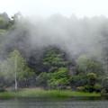 Photos: 流れる霧