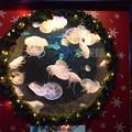 水族館もクリスマス