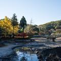 【薬師池公園(全景)】1