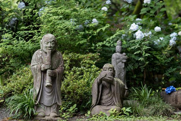 浄慶寺【羅漢像と紫陽花】