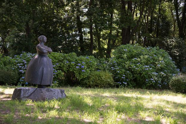 昭和記念公園【あじさいロードの景色】1