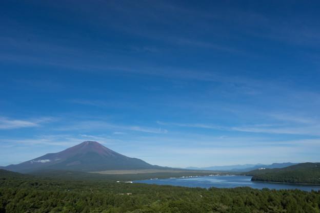 富士五湖巡り【山中湖:パロラマ台から】1