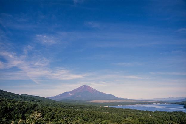 富士五湖巡り【山中湖:パノラマ台から】2
