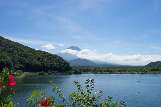 富士五湖巡り【精進湖から見る富士】2