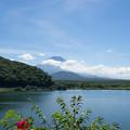 Photos: 富士五湖巡り【精進湖から見る富士】2