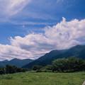 Photos: 富士五湖巡り【朝霧高原の道の駅:富士と反対方向の光景】