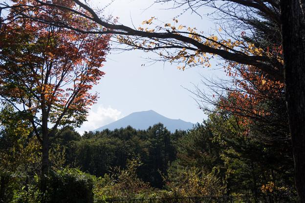 東北紅葉狩り【岩手山SA:岩手山と紅葉】