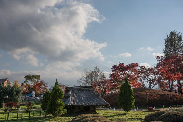 河口湖【もみじ回廊と富士山】