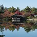 Photos: 昭和記念公園【日本庭園:池と紅葉】2