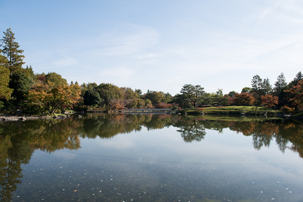 昭和記念公園【日本庭園:池と紅葉】3