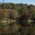 Photos: 昭和記念公園【日本庭園:池と紅葉】6