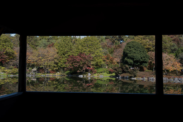 昭和記念公園【日本庭園:池と紅葉】7