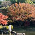 Photos: 小石川後楽園【大泉水近辺の紅葉】3