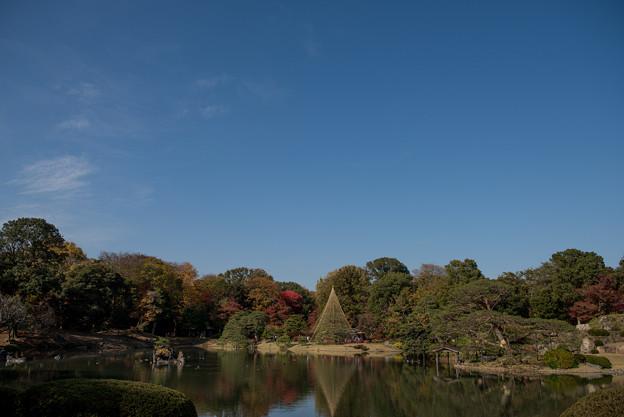 六義園【大泉水の紅葉】1