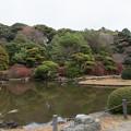 Photos: 小石川植物園【日本庭園の様子】