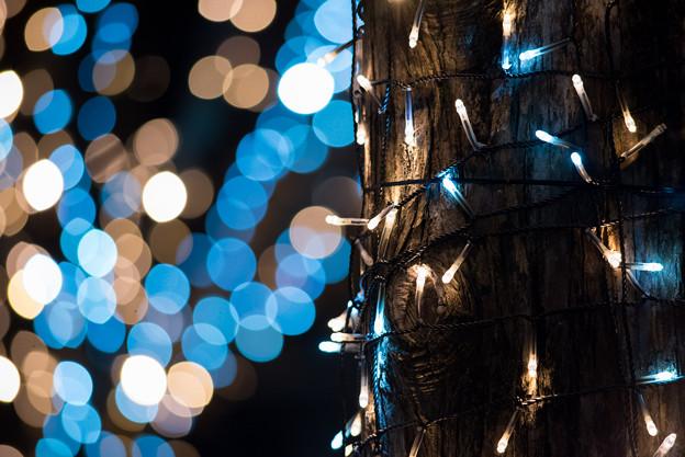 港北東急の夜景【Ai Nikkor ED 180mm f2.8S:絞りf2.8】12