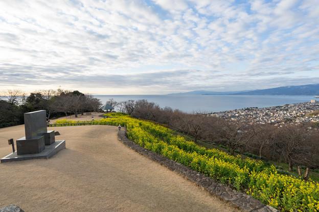 吾妻山公園【菜の花畑:Nikkor 16-35mm f4】4