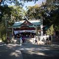 パワースポット【来宮神社】1