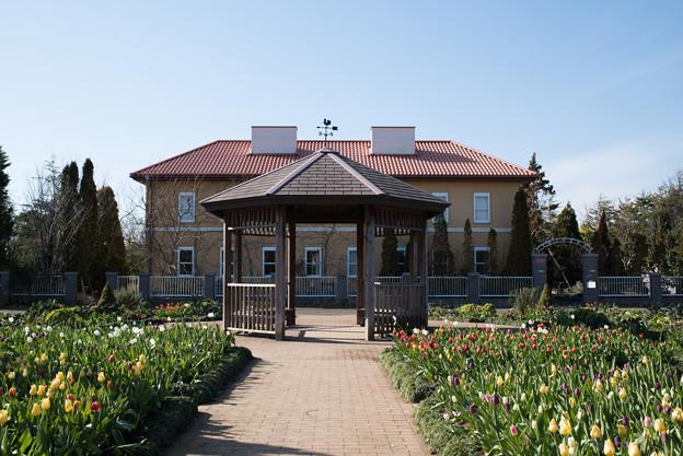 花菜ガーデン【チャペックの家と庭】3