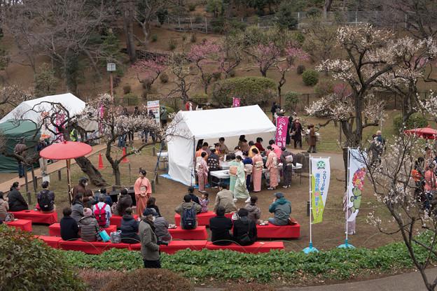 大倉山公園梅林【観梅会の眺め】2