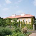 Photos: 花菜ガーデン【チャペックの家】