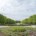 昭和記念公園【9月15日のカナール】