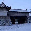 写真: 佐賀城鯱の門