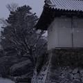 Photos: 鯱の門