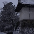 写真: 鯱の門