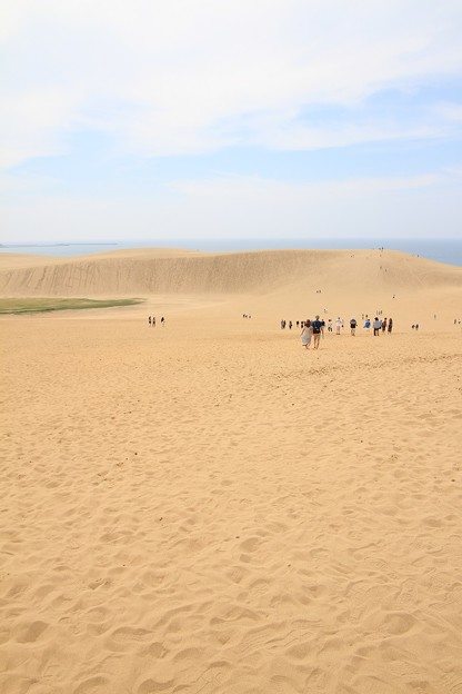 IMG_6530第二砂丘列(馬の背)