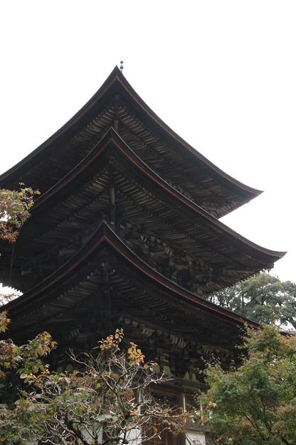 IMG_3986西明寺・三重塔(国宝)